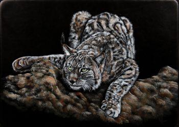 Tableau Lynx