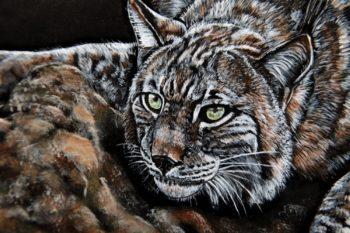 Tableau représentant un lynx. Méthode Carvinguir